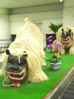 那覇空港に到着(^^)v