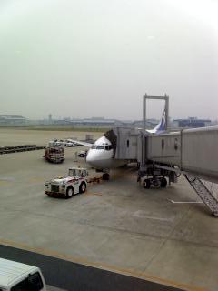 名古屋に入ります